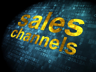 Marketing concept: Sales Channels on digital background