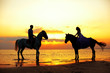 Two riders on horseback at sunset on the beach. Lovers ride hors