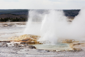 Clepsydra Geyser at the Fountain Pot area of Yellowstone Nationa