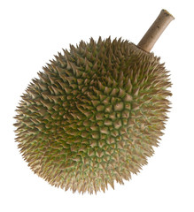 Durian, the king of fruits South East Asia on background.