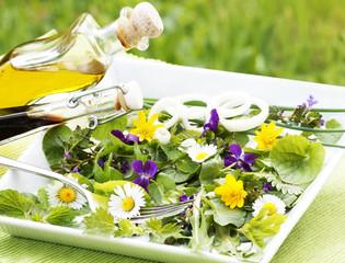Wildkräuter-Salat