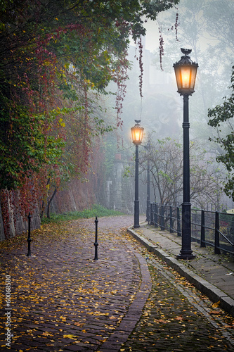 Fototapeta The mysterious alleyway in foggy autumn time with lighted lamps