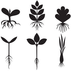 Silhouette sprout set