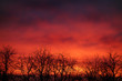 canvas print picture - dark red sunset