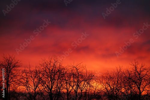 canvas print picture dark red sunset