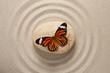 Zen rock with butterfly