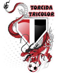 Torcida tricolor