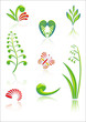 Maori Koru Design Color Elements Set