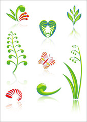 Maori Koru Design Color Elements Set