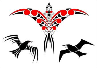Maori Koru Bird Designs with Tui