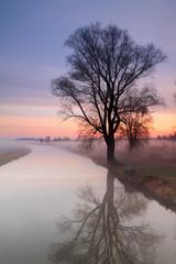 Misty sunrise on the river