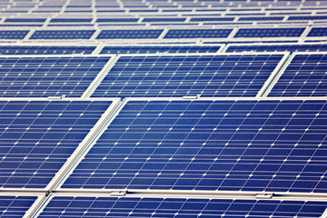 Solarplatten im Solarpark