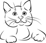 vector cat - black outline illustration