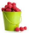 ripe raspberries in bucket, isolated on white