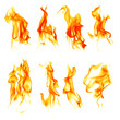 Fire flames isolated on white background - 60101398