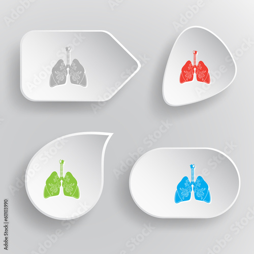 Lungs. White flat vector buttons on gray background.