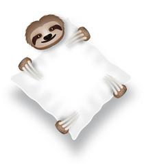 Bradipo abbracciato a un cuscino
