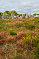 Carnac megalithic stones, Brittany, France