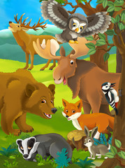 Forest animals - illustration for the children