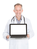 Doctor Showing Laptop