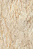 Organic Texture poster