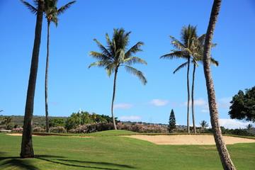 ハワイのゴルフ場
