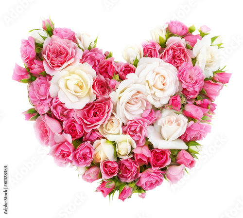Roses flowers heart shape isolated.