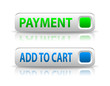 vector green and blue payment button