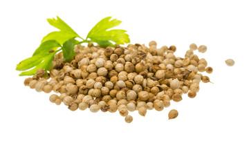 Coriandr seeds