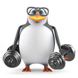 Academic penguin tries to lift some weights