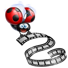 coccinella cinema