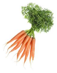 Bunt Karotten