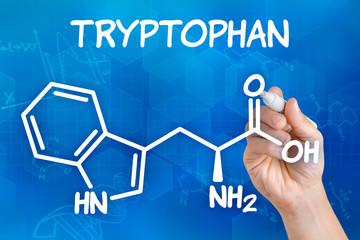 Hand zeichnet chemische Strukturformel von Tryptophan