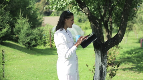 scientist checking the fruit in the orchard