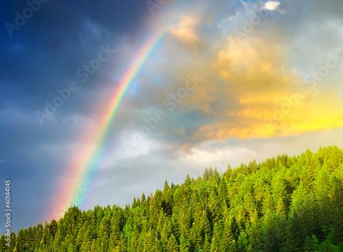 Rainbow after rain in the mountain valley. © Biletskiy Evgeniy