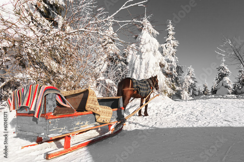 Horse and carriage in winter Carpathians