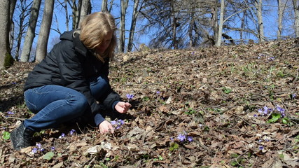 girl in woods picks first spring flowers climbing up the hill
