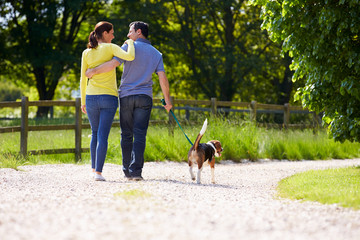Rear View Of Hispanic Couple Walking Dog In Countryside