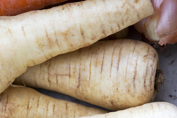 Parsnips Close Up
