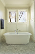 Master Bathroom Bathtub with Windows