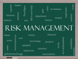 Risk Management Word Cloud Concept on a Blackboard