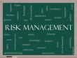 Risk Management Word Cloud Concept on a Blackboard