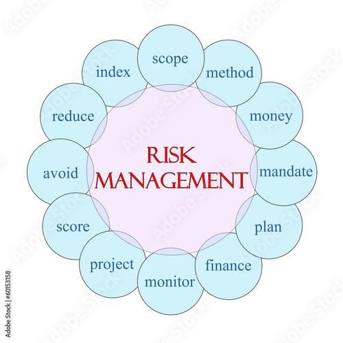 Risk Management Circular Word Concept