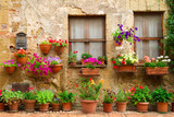 Fototapety Beautiful street decorated with flowers in Italy