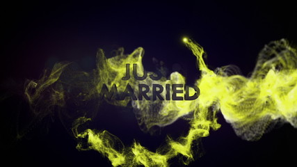 Just Married Text in Particles