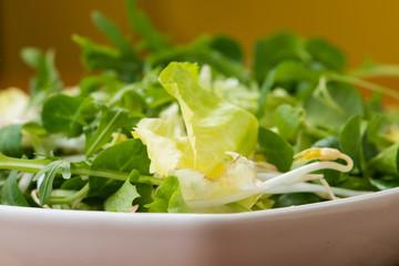 Insalata verde mista nel piatto