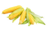 Corn cobs isolated on a white background