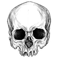 Skull drawing 01