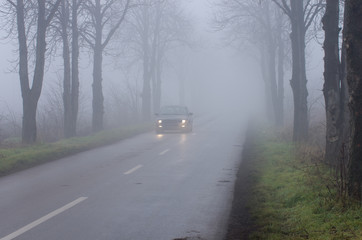 Car on road on thick fog