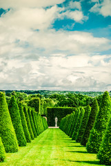 conical hedges lines and lawn